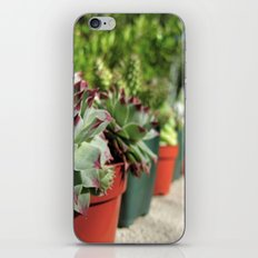 Potted Pals iPhone & iPod Skin