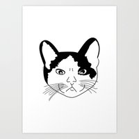 Pina Art Print