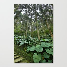 Forest Blanket Canvas Print