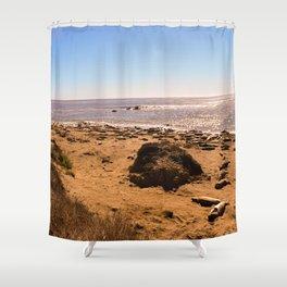 Elephant Seals on the California Coast Shower Curtain