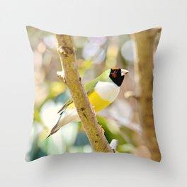 Peaceful Gouldian Throw Pillow