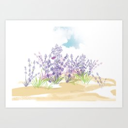Lavender flower Art Print