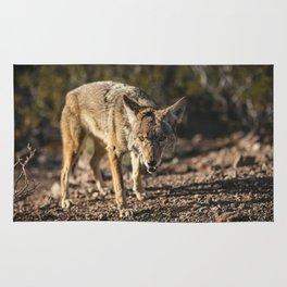 Gazing Coyote Rug