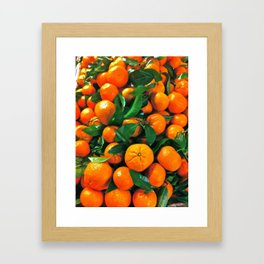 oranges from the grocery store Framed Art Print
