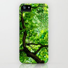 Peek into the Summer Trees iPhone Case