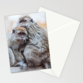 Macaques Stationery Cards
