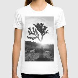 Joshua Tree with Sun Flare T-shirt