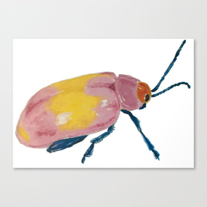 colorful beetle Canvas Print