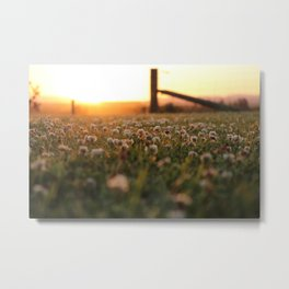 Sunset in Southland Metal Print
