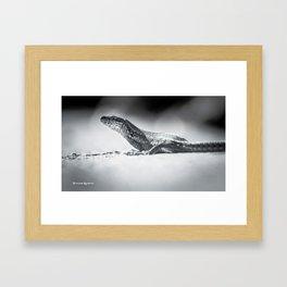 The iron lizard III Framed Art Print