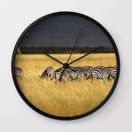 Zebra in Afternoon Light Wall Clock