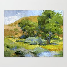 Shade of The Cottonwoods Canvas Print