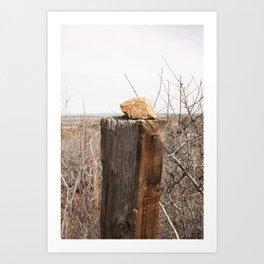 human interference (rock on a post) Art Print