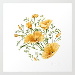 California Poppies - Watercolor Painting Art Print