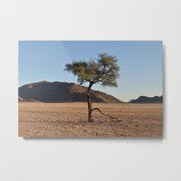 Namib Desert Tree Metal Print