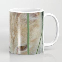 My Beautiful Cat A Coffee Mug