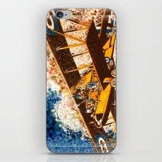 Wings Aloft iPhone & iPod Skin