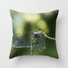 Fly, Dragon, Fly Throw Pillow