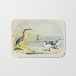 PLATE XL The Least Bittern The Sanderling, or Ruddy Plover Ornithology Birds Vintage Studies America Bath Mat