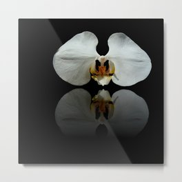White Reflection Metal Print