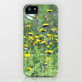 Summer Field Killington Vermont iPhone Case
