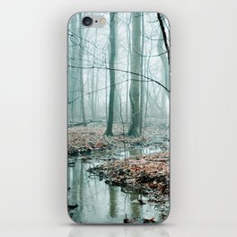 Gather up Your Dreams iPhone Skin