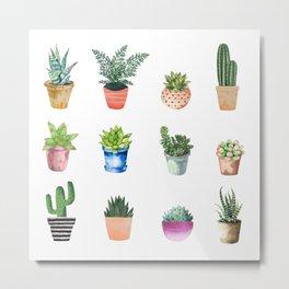 Pretty Succulents Metal Print