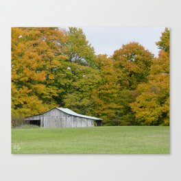 Across the Meadow Canvas Print