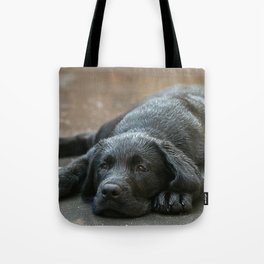 Labrador dog in the rain ! Tote Bag