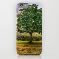 Green Tree and Sunset Sky iPhone 6s Slim Case