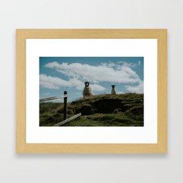 Ewe and her lamb on Haworth Moor Framed Art Print