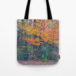 Autumn Trail at Lums Tote Bag