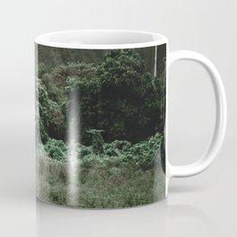 Summer Road Trip II / Kaui, Hawaii Coffee Mug