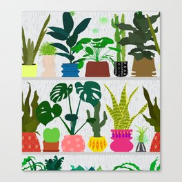 Plants on the Shelf in Gray + White Wood Canvas Print