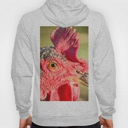 Mesmerized - Chicken Hoody