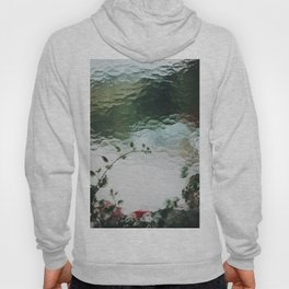 Flowers Behind Glass. Window Textures. 35mm Analogue Film Photography. Moody Nature Fine Art Print. Travel Wall Art. Hoody