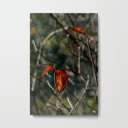 Autumns Last Dance Metal Print
