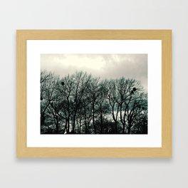 Birds Nest i Framed Art Print
