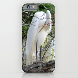 GREAT WHITE EGRET (4 OF 4) - BOWING iPhone Case