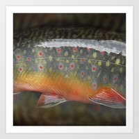 trout Art Prints featuring Trout by sorshag
