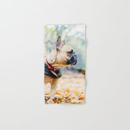 Cute puppy by Neil Cooper Hand & Bath Towel