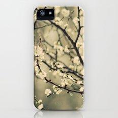 Blossom iPhone (5, 5s) Slim Case
