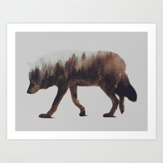 Norwegian Woods: The Wolf Art Print