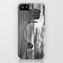 The Mittens iPhone Case