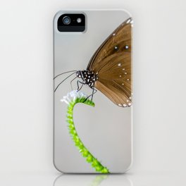 Spotted Black Crow iPhone Case