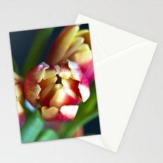 Symphony of Spring  Stationery Cards