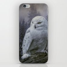 Snowy Owl looking for prey iPhone & iPod Skin