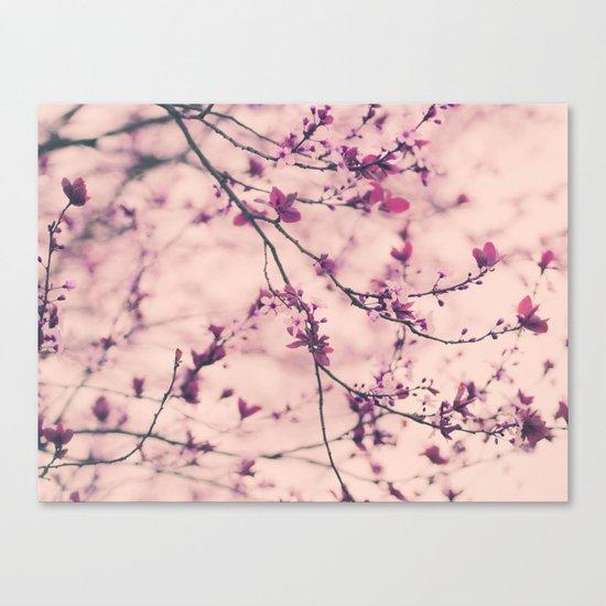 Lace Dress Canvas Print