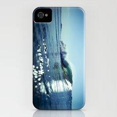 Estuary Light Flares Slim Case iPhone (4, 4s)