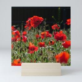 Red Poppies Mini Art Print